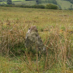 standing stone near hedge on Codsend moor furthest from hoar moor.